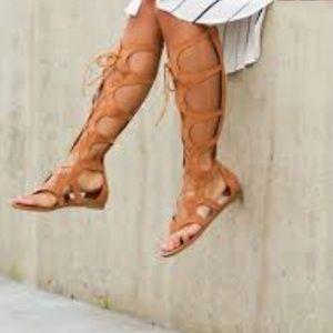 Tall Gladiator Sandals Leila Stone Cionna 6